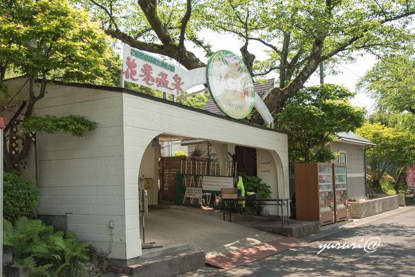 バラ園-1.JPG