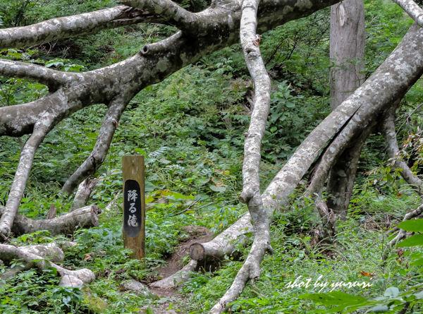女神山-21-降る滝.JPG